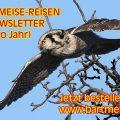 Reise-News per Newsletter – jetzt anmelden!!