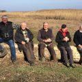 Rothalsgänse, Fischmöwen und Adlerbussarde am Schwarzen Meer in Bulgarien und Rumänien