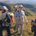 Seltene Vögel, Ameisenbär und Mähnenwolf in der endlosen Steppe von Minas Gerais
