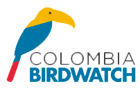 Colombia Birdwatch