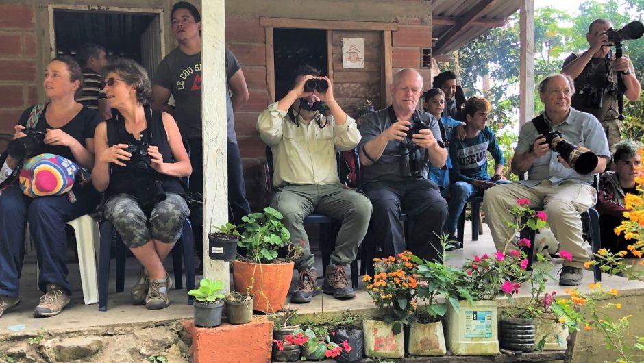 Reisebericht Kolumbien: Bei den Endemiten in den Santa Marta-Bergen und in den Ost-Anden