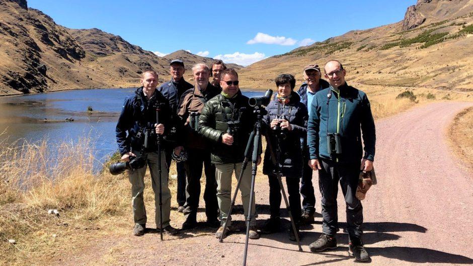 Zauberhafte Vogelwelt in den Anden und im Amazonas – Bartmeise-Reisegruppe derzeit in Peru unterwegs